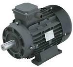 Электродвигатель RAVEL ( 5,5 кВт : 1420 об/мин) с наружным валом