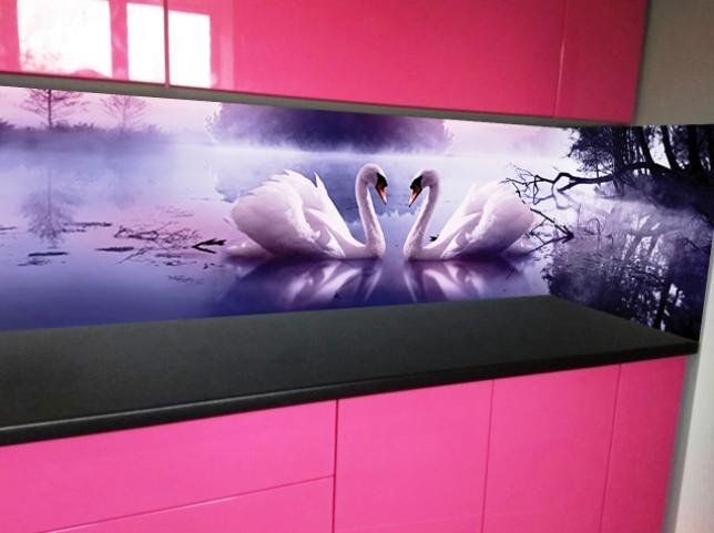Скинали с изображением лебедей
