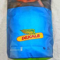Семена кукурузы, Monsanto, DKС 3795, ФАО 250