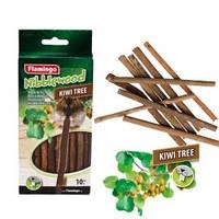 Палочки для грызунов для гигиены зубов, древесина киви, 14,5 см, 40 г