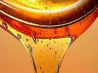 Мед оптом цена