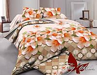 Комплект постельного белья XHY1510 семейный (TAG polycotton-364/с)