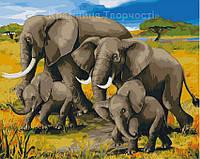 Картины по номерам Африканский полдень, 40х50см. (КНО2464)