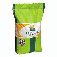 Кубус ЕС гибрид кукурузы (фао 310) Евралис