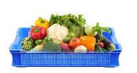 Пластиковые ящики для овощей, фруктов и зелени