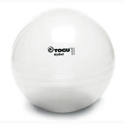 Мяч для фитнеса Togu Myball серебро d=65см, фото 2