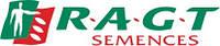 Семена кукурузы от производителя РАЖТ (RAGT Semences)  / п.о.