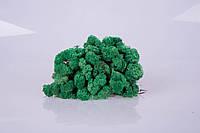 Стабилизированный мох pacific green 250 грамм/упаковка