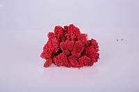 Мох стабилизированный red 250 грамм/упаковка