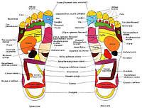 Гидромассажные ванны для ног ves electric для здоровья и хорошего настроения
