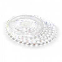 Светодиодная лента BIOM Professional 2835 12в, 60 LEDs/m, 4,8W белый