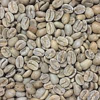Арабика Эквадор (Arabica Ecuador Loja Palandra) 200гр. ЗЕЛЕНЫЙ кофе