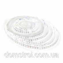 Светодиодная лента BIOM Professional 2835 12в, 120 LEDs/m, 9,6W белый