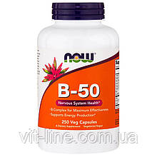 Now Foods, B-50, 250 капсул