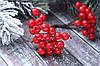 Ягоды рябины красного цвета около 40 шт/уп.