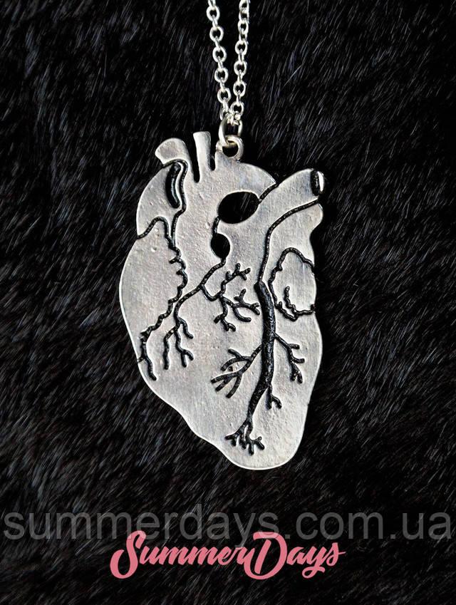 Кулон анатомическое сердце