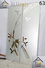 Фасады (двери) для шкафов купе - раздвижные системы художественное матирование (пескоструй), фото 3