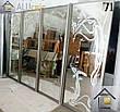 Фасады (двери) для шкафов купе - раздвижные системы художественное матирование (пескоструй), фото 2