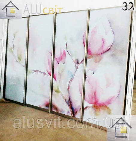 Фасады (двери)  фотопечать для шкафов купе, гардеробных, фото 2