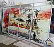 Фасады (двери)  фотопечать для шкафов купе, гардеробных, фото 4