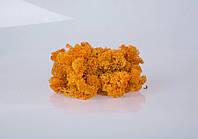 Декоративный мох autumn 250 грамм/упаковка