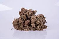Стабилизированный мох brown 250 грамм/упаковка