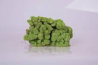 Стабилизированный мох Mint 250 грамм/упаковка