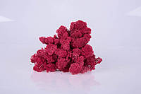 Стабилизированный мох Carmin Red 250 грамм/упаковка