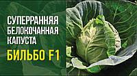Капуста Бильбо F1 Nong Woo Bio 2500 семян