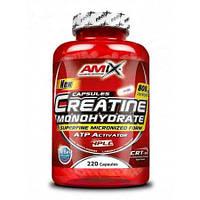 Креатин Amix Monohydrate (220 caps)