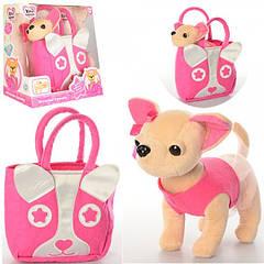 М'які іграшки, дитячі рюкзаки, гаманці, сумочки