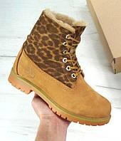 Женские зимние ботинки Timberland 6 inch Yellow с натуральным мехом (Топ реплика ААА+)
