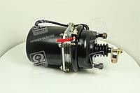 Камера тормозная с пружинным энергоакк (всборе ,тип 20/20)  100.3519100-1