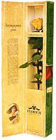 Солнечный Цитрин в подарочной коробке 5 карат на коротком стебле