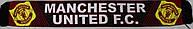Шарф фанатский тканевой с символикой FC Manchester