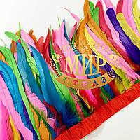 Тесьма перьевая из перьев петуха, цвет Rainbow, высота 20-25 см, цена за 0,5м