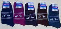 Носки женские теплые махровые х/б-стрейч. Опт 11 грн