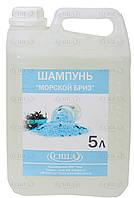 Шампунь для волос в бутыле (5 л) для отелей и фитнес-клубов