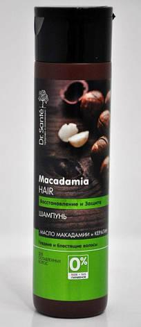 """Шампунь для волос """"Восстановление и защита"""" для ослабленных волос Dr. Sante Macadamia Hair 250мл., фото 2"""