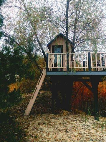 Игровая зона: дом на деревьях