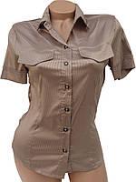 Модные женские рубашки (38,40)