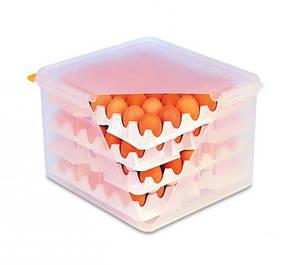 Емкость для хранения яиц с крышкой 9 л., 35х32х20 см. полипропиленовая Araven