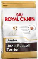 Роял Канин Джек Рассел Юниор Royal Canin Jack Russell Junior сухой корм для щенков собак 500 г
