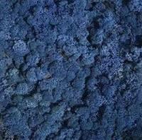 """Стабилизированный мох """"Ягель"""" синий 1кг, фото 1"""