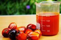 Близится запрет на пальмовое масло