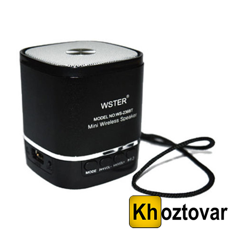 Портативная Bluetooth колонка WSTER WS-236