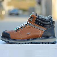 Мужские кроссовки-ботинки Lacoste коричневые (зимние)