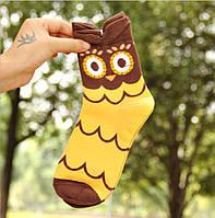 Носки яркие с принтом для подростков и взрослых