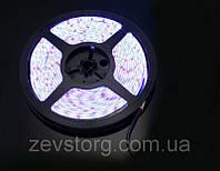 Cветодиодная лента SMD 3528 (5 м) Белая