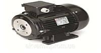 Электродвигатель Nicolini 1,85 кВт (полый вал)